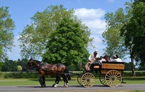 Orchard Poyle Carriage on the Long Walk, Windsor