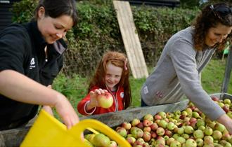 Apple weekend at Cliveden